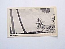 Moore-McCormack Line, postcard Trinidad Seashore, in Port, preprinted note,