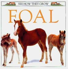 Foal See How They Grow