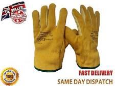 Unbranded Unisex Gardening Gloves