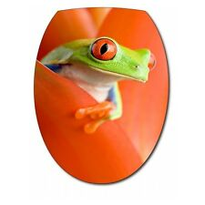 Sticker Abattant de WC Grenouille 040