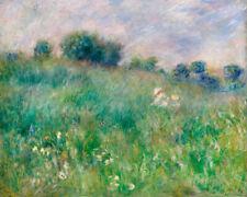 Pierre Auguste Renoir - Meadow
