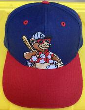 Vintage 90s Asheville Tourists Outdoor Cap OC Snapback Hat Cap MiLB Baseball