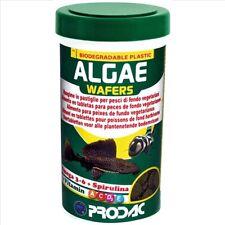 Prodac Algae Wafers 550G Catfish Bristlenose Pleco Disc