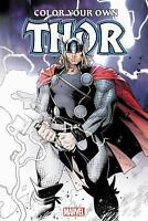 Color Your Own Thor  VeryGood