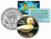 BABY DUCKLING *Collectible Birds* JFK Kennedy Half Dollar US Colorized Coin DUCK