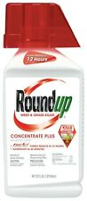 Roundup Weed & Grass Killer Concentrate Plus 32 oz