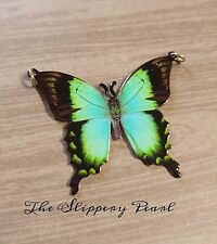 Butterfly Connector Link Pendant Charm Metal Blue Green Black Butterfly Pendant