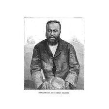 Sud Africa ZULU nazione dabulamanzi cetshwayo FRATELLO-stampa antica 1883