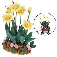 1Pc 1:12 Dollhouse Miniature Garden Ornament Green Plant Flower Garden Access SL