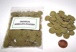 Quality Spirulina Algae Wafers - Plecs, Loaches, Cichlids