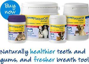 Plaque Off Animal, Dog & Cat 60g, 180g, 420g & Cat 40g. For Bad Breath & Tartar