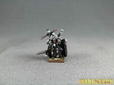 25mm Warhammer Wds painted Warriors of Chaos Wulfrik the Wanderer t15