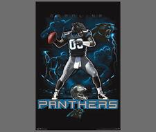 Rare CAROLINA PANTHERS NFL QB-Panther-Style Theme Art Action Wall POSTER