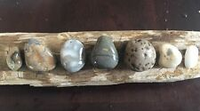 6 Stunning Natural Beach Stones Pendants Lake Michigan Jewelry Crafts Beads #376