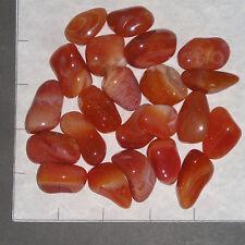 CARNELIAN Banded & Plain Botswana Agate med-lg tumbled 1/2 lb bulk stones