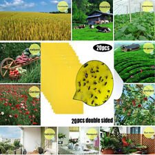 20Pcs Strong Flies Traps Bugs Sticky Board - Catching Aphid Insects Pest Killer