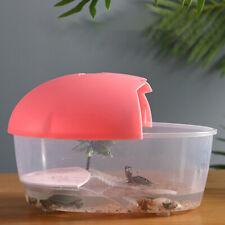 Plastic Turtle Tank Boc Reptile Pet Habitat Box Reptile Pet Perching Box