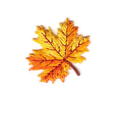 Autumn Leaves Golden Yellow Fall Winter Iron On Embroidered Patch