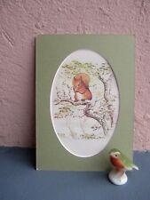 vintage illustration from Beatrix Potter's Squirrel Nutkin