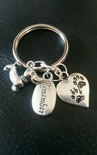 Pet Bereavement Keyring Angel Paw Keychain In Memory of Dog Sympathy Charms