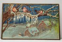 Winter Greeting Birds Houses Embossed 1909 Linden  Michigan Postcard G15
