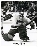 NHL 1975 - 76 Goalie Curt Ridley Vancouver Canucks Game Action 8 X 10 Photo Pic