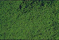 242,35 € / m² - Heki 1602 - Mikroflor Belaubungsvlies dunkelgrün - 28 x 14 cm