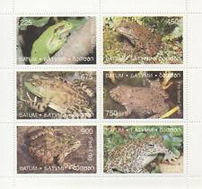 Rana / Rospo RETTILI Bullfrog firebellied TOAD MARSH FROG Tree Frog mnh foglio TIMBRO