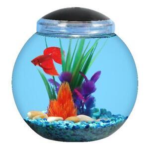1 Gallon Globe Betta Fish Bowl Aquarium With LED Lights Break Resistant Tank NEW