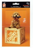 Home Depot Gift Card / Fluffy Dog - Husky Tool / No Value ~ Collectible