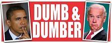 ANTI OBAMA DUMB & DUMBER POLITICAL BUMPER STICKER #4213