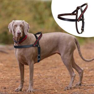 No Pull Dog Harness Adjustable Quick Fit Real Leather Large Dog Stripe Vest 2XL