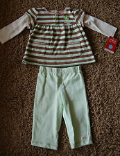 NWT Girls Carter's Long Sleeve Embroidered Flower Dress Pants Set Size 6M LQQK!
