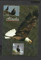 Alaska Joe Colour Postcard Wild Birds of Alaska unposted