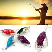 4pcs winged cicada surface walker bug lure bream bass trout plum Pro AU