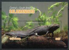 Guyana 2018 MNH Central & South American Salamanders 1v S/S Amphibians Stamps