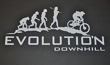 SANCTUARIES EDGE EVOLUTION DOWNHILL TEXT MOUNTAIN BIKING BIKE STICKER DECAL