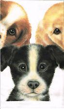 NEW Dog Puppies Puppy Pet Face 100% Cotton Tea Towel