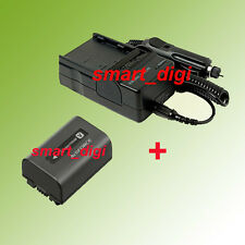 Battery + Charger for Sony Handycam HDR-CX100 HDR-CX130 HDR-CX160/B HDR-CX160E