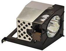 REPLACEMENT LAMP & HOUSING FOR ACER DSV0504 , ARCLITE / UHR RM601, RM607