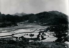 TONKIN c. 1935 - Rizières entre Cao Bang et Dong Khi - Div 12156