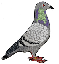 Pigeon Pigeons Bird  Dove  Embroidered Patch Large & Small Sizes