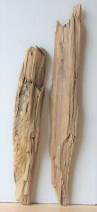 Treibholz Schwemmholz Driftwood 2 XL  Hölzer Terrarium Dekoration 54-70 cm