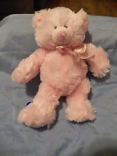 "8 1/2"" Pink Plush Baby's My First Teddy Bear by Baby Ganz....NWOT"