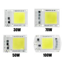 30W50W70W100W200W 220V/110V Input Integrated Smart IC Driver Floodlight COB Chip