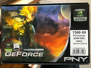 PNY Nvidia GeForce 7300 GS 256MB DDR2 64bit VGA+DVI+HDTV-out  Graphic Card *NEW*