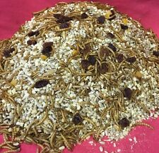 Hedgehog Mix 1kg Mealworms Fruit Hearts Nuts Hamsters Rat Mice Wild Garden Bird