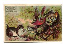 Victorian Trade Card SHAUB & BRO Boots Shoes Lancaster PA bird using shoe nest