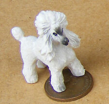 Resina de escala 1:12 Blanco Caniche (M) Perro Casa de Muñecas en Miniatura Mascota Animal LP16