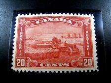 CANADA - SCOTT # 175   -   MNH                  (can-25)